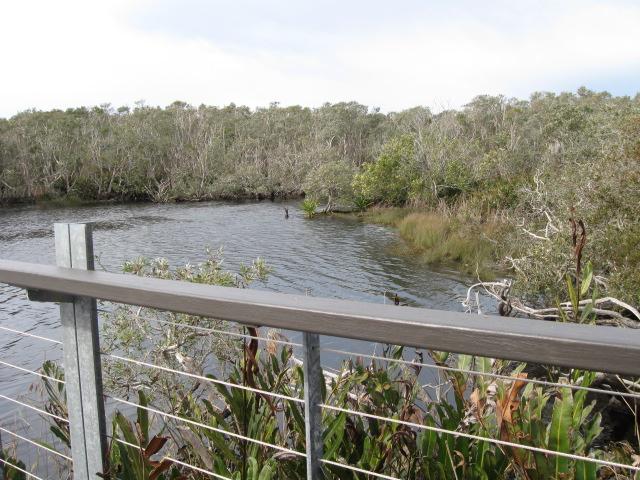 Tallow Creek